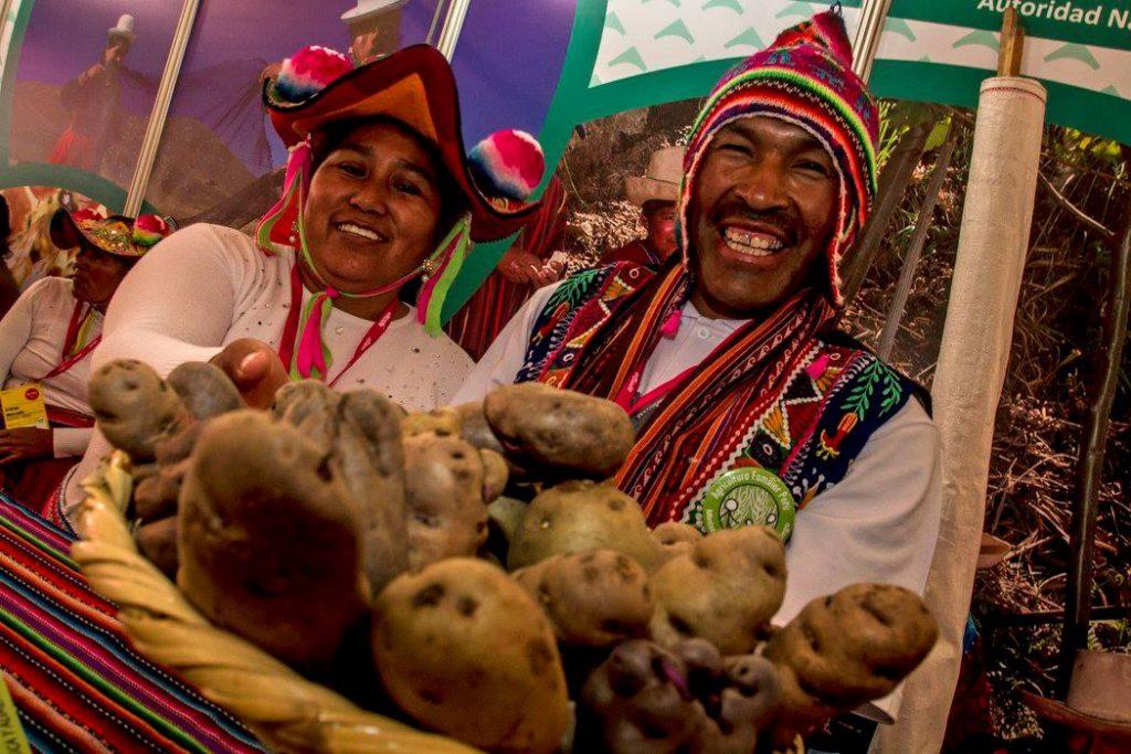 gande-mercado-batatas